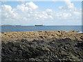 SW8025 : Rocky headland on Nare Point by Rod Allday