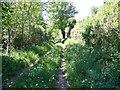 SU4255 : Footpath near Crux Easton by Maigheach-gheal
