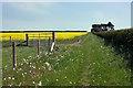 SE9863 : Bridleway to Bridlington by Peter Church