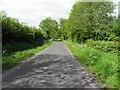 H3725 : Bun Road by Kenneth  Allen