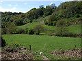 SN1642 : Valley of Afon Piliau, looking southwest by ceridwen