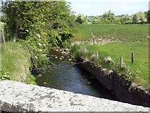 N9055 : Skane River, Co Meath by C O'Flanagan