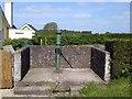 N9055 : Pump, Co Meath by C O'Flanagan