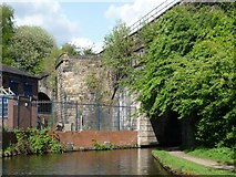 SJ9398 : Approaching the railway bridge by Christine Johnstone