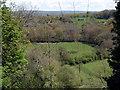 SN1641 : View towards Cilgerran by ceridwen