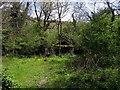 SN1641 : The ruined farm of Cwm by ceridwen