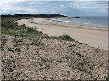 NT5185 : Yellowcraig beach by M J Richardson