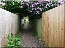 SP2871 : Footpath exit to John O'Gaunt Road by John Brightley