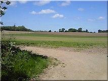 N8652 : Landscape, Co Meath by C O'Flanagan