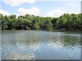 SJ7965 : Southern end of Brereton Heath Lake by Jonathan Kington