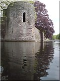 ST5545 : Bishops Palace & Moat, Wells by chris morton
