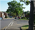 TQ2665 : Grennell Road, Benhilton by Stephen Richards