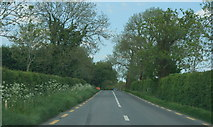 N9135 : On the R408, County Kildare (2) by Sarah777