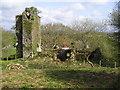 SN0613 : Newton Church Ruins by Chris Andrews