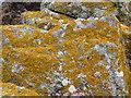 C1544 : Lichen covered rocks by Willie Duffin
