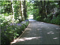 SW6745 : The road to Portreath Airfield. by Rod Allday