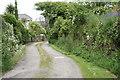 SW4231 : Lane through Bosvenning by Elizabeth Scott
