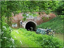SU2363 : Eastern Portal of Bruce Tunnel: a study in green by David Martin