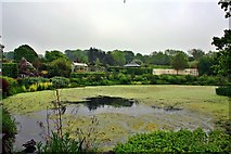 SE2853 : The Queen Mother Lake, RHS Harlow Carr by Paul Buckingham