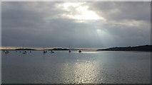 SZ0287 : Poole Harbour Islands by John Fielding