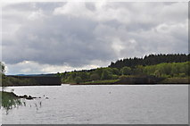NY6491 : Looking across to Bakethin weir by Nicholas Mutton