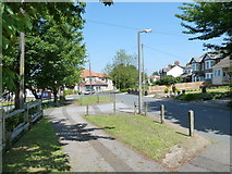 TQ4563 : Lamppost in Worlds End Lane by Basher Eyre