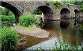 J3269 : The low Lagan, Shaw's Bridge, Belfast (2) by Albert Bridge