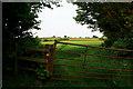 SK4339 : Gate near Upper Hagg Farm by David Lally