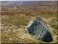 NN5872 : Moorland boulder by wrobison