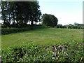 J3696 : Turcagh Townland by Kenneth  Allen