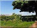 J3694 : Ballynarry Townland by Kenneth  Allen