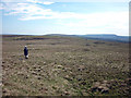 NY7230 : Moorland, Knock Fell by Karl and Ali