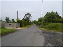 O1450 : Country Road, Co Dublin by C O'Flanagan