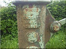 O1451 : Manufacturer's Plaque on water pump, Belinstown Co Dublin by C O'Flanagan