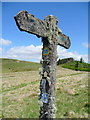 SN8649 : Lichen-covered signpost by Jonathan Billinger