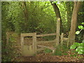 TQ5340 : Stile in Avery's Wood on the Wealdway by David Anstiss