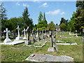 TQ4469 : St. Nicholas' Church, Chislehurst - churchyard (2) by Basher Eyre