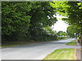 SJ8174 : The A537 at Chelford by Rod Allday