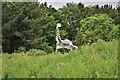 NZ4821 : Steel Dinosaur, Teessaurus Park by Paul Buckingham