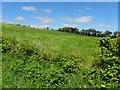 C2131 : Gortnavern Townland by Kenneth  Allen