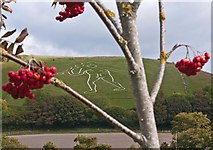 ST6601 : Cerne Abbas giant by Roger May