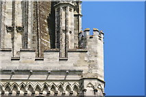 SU8504 : Peregrine Falcons at Chichester Cathedral (6) by Peter Trimming
