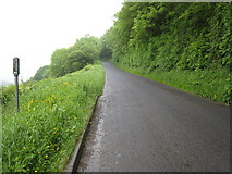 SE6691 : Minor road to Gillamoor by Philip Barker