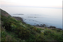 TA0390 : Cliffs south of Scalby Ness by N Chadwick