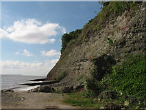 ST1972 : Near Penarth Head by Gareth James