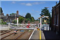 TL9787 : Harling Road Station and Level Crossing by Ashley Dace