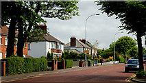 J3774 : The Holywood Road, Belfast (2) by Albert Bridge