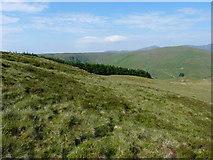 SH9124 : Just above Craig yr Ogof by Richard Law
