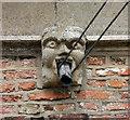TF6211 : St Peter & St Paul, Watlington, Norfolk - Gargoyle by John Salmon