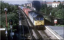 TQ3084 : Container train passing Caledonian Road and Barnsbury by roger geach